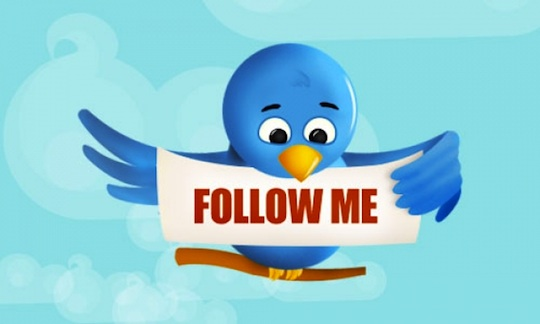 How To Increase The Number Of Followers On Twitter
