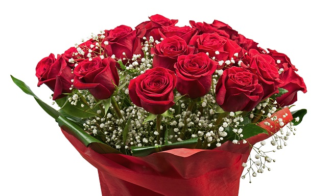 Roses Wholesale At An Incredible Price