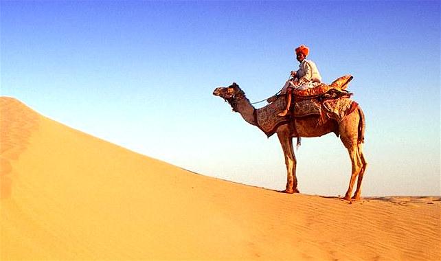 DESERT SAFARI 23