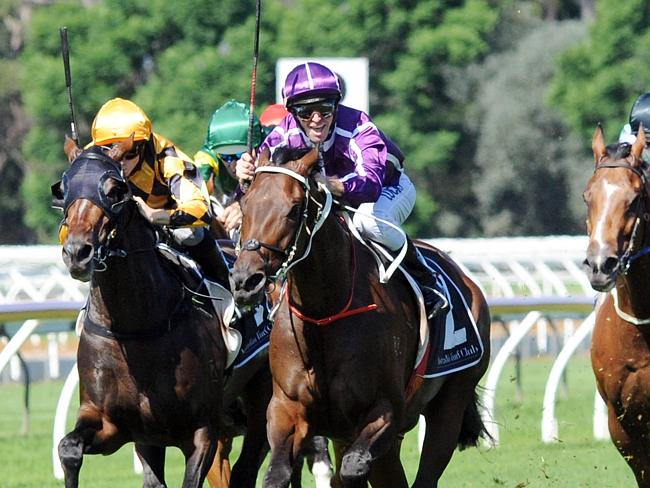 Cox Plate The Most Welcomed Race Course Internationally