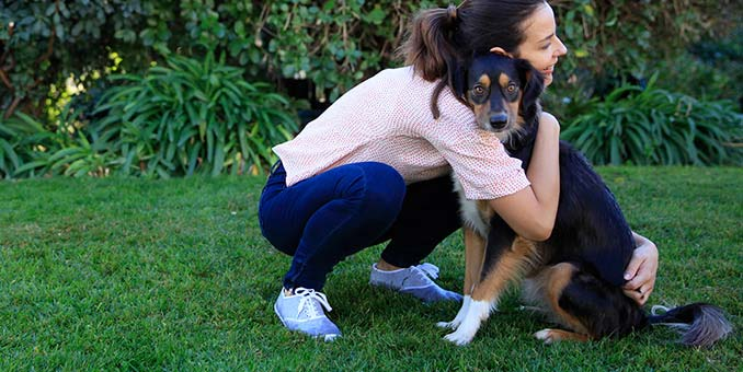 5 Myths About Pet Health Insurance