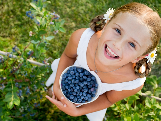 file_176275_0_Berry_Picking