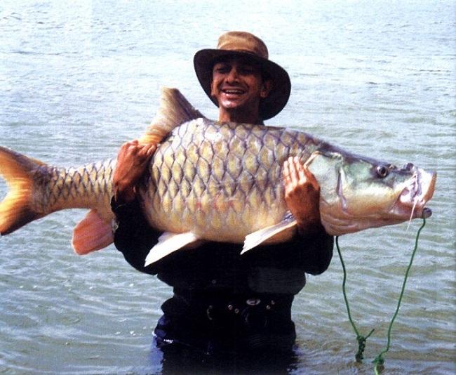 Bheemeshwari Fishing