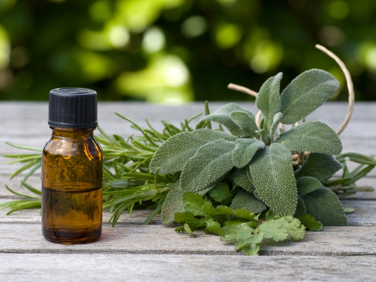 Essential Oils for Fleas