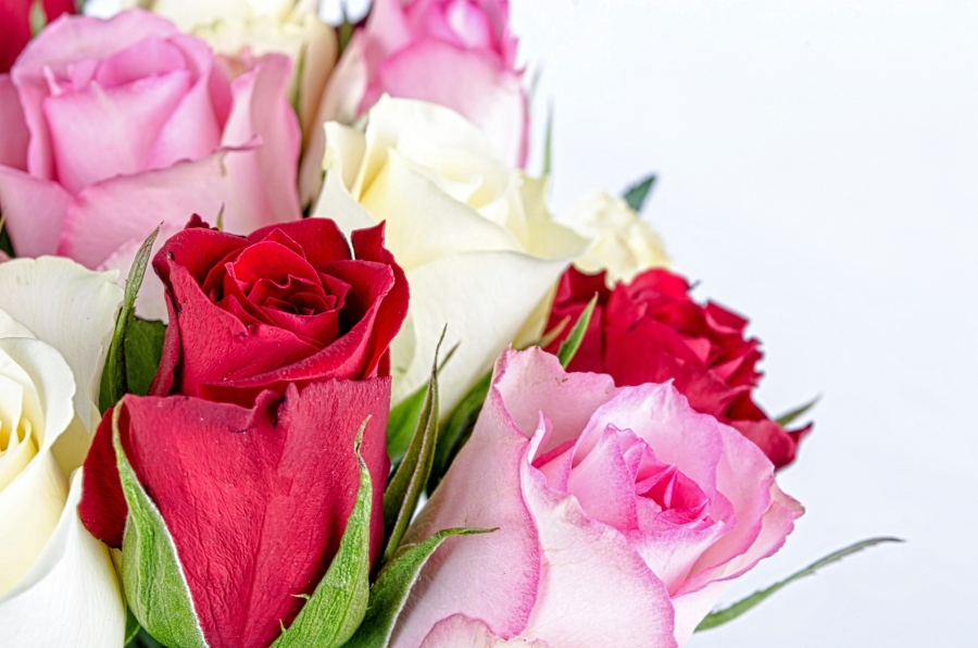 Make The Holiday Season Even More Special With The Gift Of Flowers