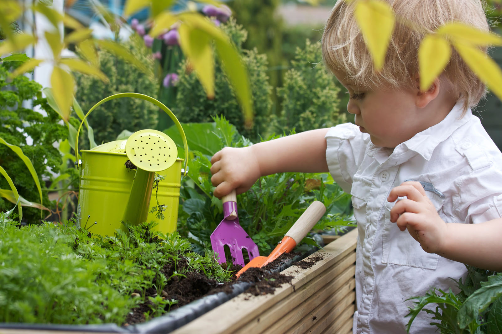 Finding The Perfect Garden Services For You