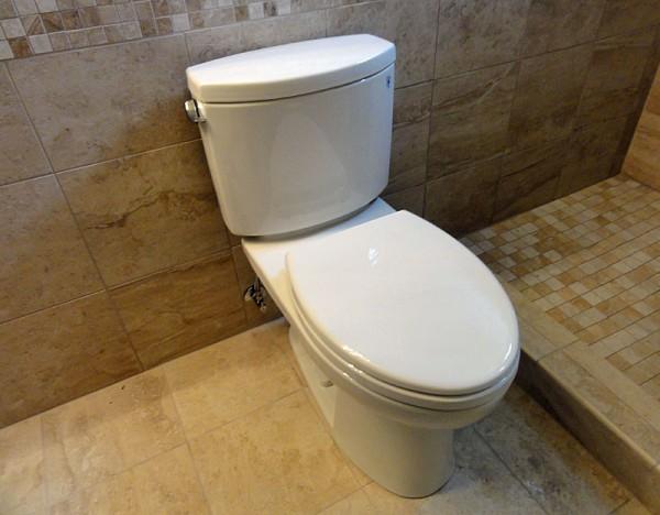 Where To Buy Your Next Toilet