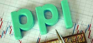 How To Use PPI Claims Calculator Online?