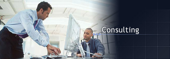 softwareconsulting