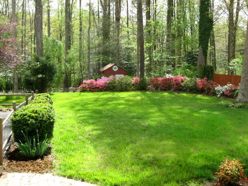 Seasons-Backyard-Spring
