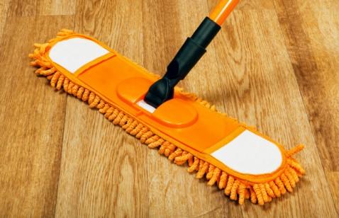 mop for hardwood floor