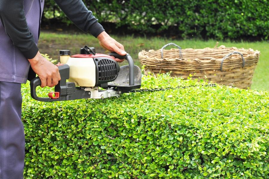 DIY Lawn Maintenance Tools You'll Need
