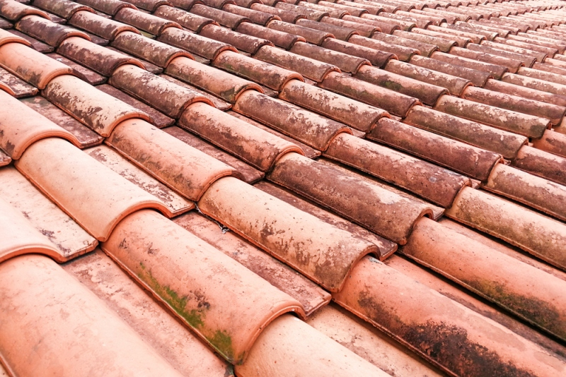 Roof No-No's: 4 Things You Should Not Even Consider Doing to Your Roof