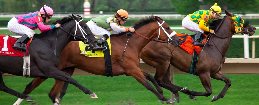 What Are The Few Types Of Horse Racing Events?